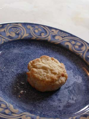 The Lone Biscuit